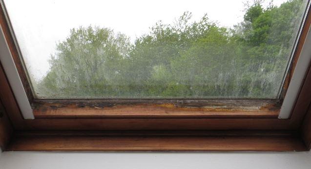 Moissisure sur fenêtre Velux